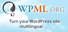 metalenguaje de WordPress